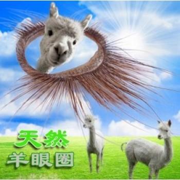Bao cao su vòng lông thú